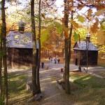 Lagiewniki森林公园